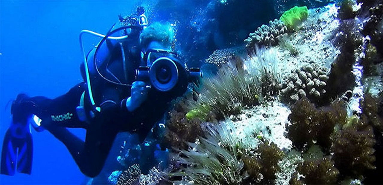 Scuba diving in phuket experience the real taste of diving all4diving - Where to dive in thailand ...