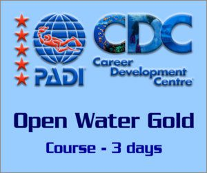 PADI Open Water Course Gold