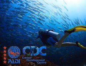 PADI Diving Courses Phuket touch menu