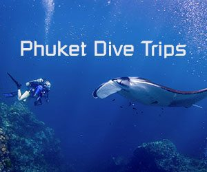 Diving day trips Phuket product