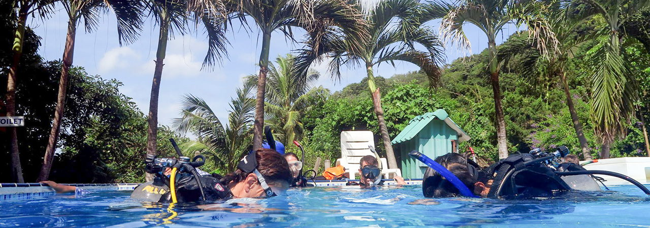 Scuba Diving Lessons with All4Diving - PADI Open Water pool training session