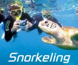 Snorkeling_with_turtle