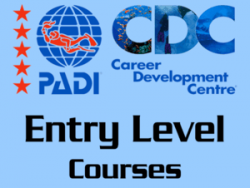 Entry Level PADI courses