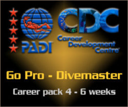PADI Go Pro - Divemaster Career Pack course