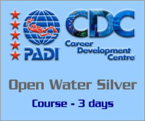 PADI Open Water Course Silver