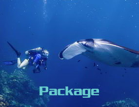 Phuket diving trips packages touch menu
