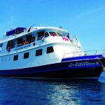 Similan Islands Liveaboard - Manta Queen 2 (1)