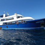 Similan Islands Liveaboard - Manta Queen 3 (1)