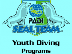Youth Diving Programs