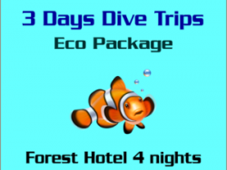 3 Days Dive trips Eco Package