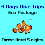 4 Days Dive trips Eco Package