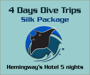 4 Days Dive trips Silk Package