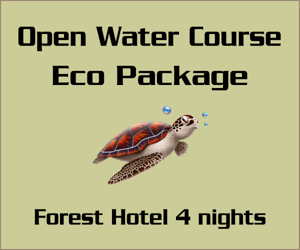 Open Water Course Eco Package - Forest hotel