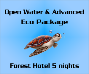 Open Water and Advanced course Eco Package