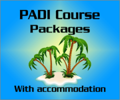 PADI Course Packages