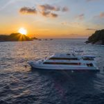Scuba Diving Phuket - MV Sawasdee Fasai Liveaboard duve and cruise to Similan Islands (19)