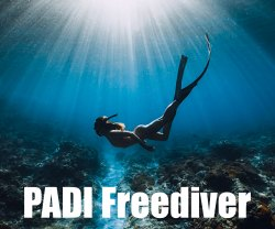 PADI Freediver Courses