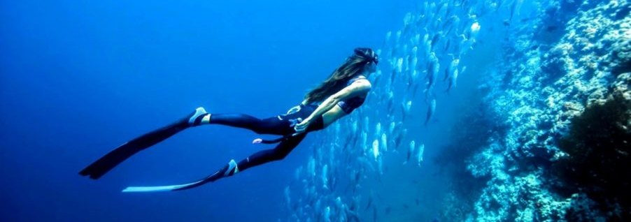 PADI Freediver in Phuket - Slider